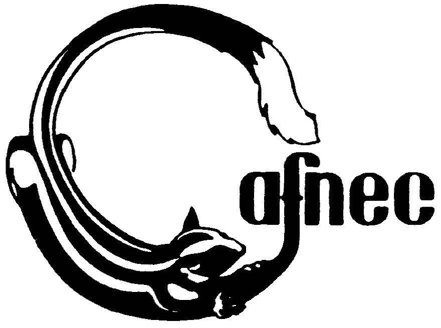 CAFNEC_logo_No text_clr_big